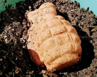 """Seed Bombs """"Nasturtium"""" set"""
