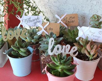 20 Wedding Favor Tags for Succulents