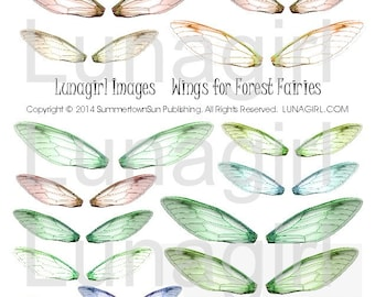 FAIRY WINGS digital collage sheet dragonfly wings, altered art fairies faerie, green orange brown woodland forest colors, ephemera DOWNLOAD