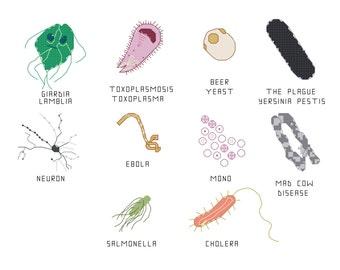 Cross Stitch Pattern -- Common Microbes, set 2