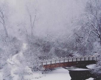 Snowy Bridge Print