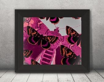Bright Pink Butterflies