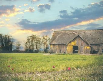 Barn art, barn print, barn photo, old barn, barn decor, barn wall decor, barn picture, old run down barn, rustic barn.