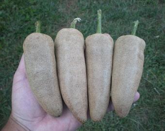 20 Farmers Jalapeno Pepper seeds