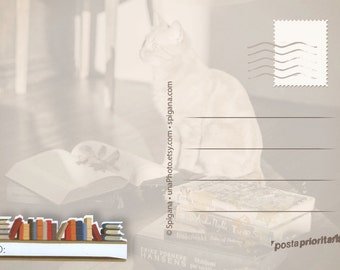 Postcard ID stickers - Row of Books, Post Card stickers for Postcrossing. Post label. Set of 20