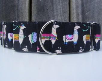 Martingale Dog Collar - Greyhound, Sight hound