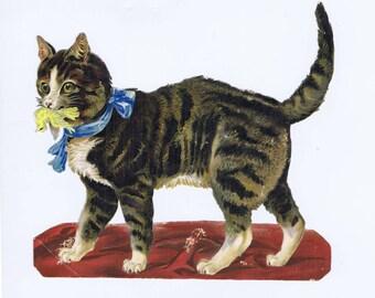 Large Cat Antique 19th century Victorian Color Chromolithograph Scrap Die Cut Bird in Mouth Scrapbook