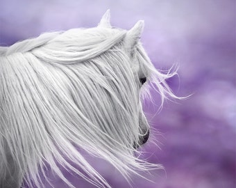 Whimsical wall art, fantasy art, surreal horse photo, purple, lavender, nursery art, girls wall decor, dreamy