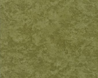 Moda COUNTRY ROAD Quilt Fabric 1/2 Yard By Holly Taylor - Moss Green 6538 83