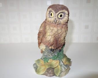 Tawny Owl by Kowa