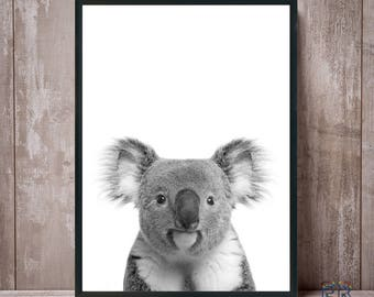 Koala Print, Black and White Koala, Nursery Print, Koala Wall Art, Animal Print, Koala Photo, Animal Decor, Animal Art, Kids Room Decor