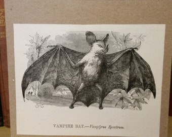 Handmade Victorian Vampire Bat Card - Original Illustration from 1892 - OOAK