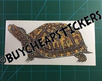 Box Turtle Decal/Sticker - Printed