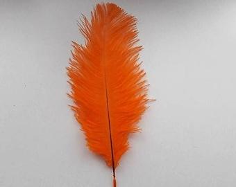 set of 5 feathers orange