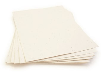 """10 Cream Sheets of Wildflower Plantable Seed Paper - 8.5 x 11"""" - 85lb - Handmade - Crafting"""