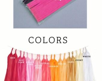 Tassel Garland Kit - DIY Tissue Tassel Garland Kit - Custom Colors - choose FOUR colors (EB3086)