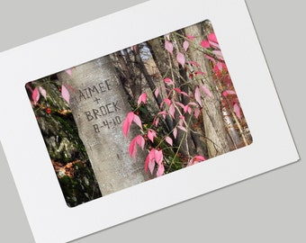 Sweetheart Tree Unique Valentines Day, Wedding, Anniversary Personalized FRAMABLE Photo Folded Card with Envelope,  Quality Print, Gift