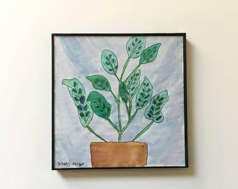 27/100: spotted houseplant - original framed watercolor illustration