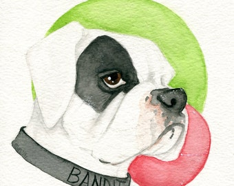 Custom: Pet Portrait