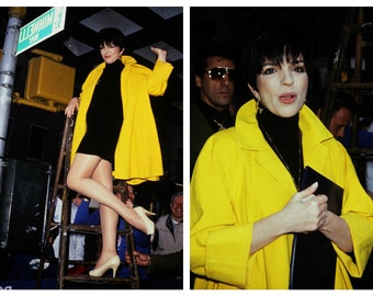 two vintage 35mm color photo slides of Liza Minnelli