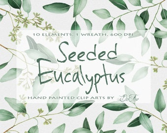 "Eucalyptus greenery clipart willow seeded clip art greenery eucalyptus watercolor clipart greenery leaves handpainted - ""Seeded Eucalyptus"""