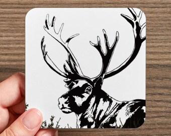 4 Coasters set, caribou coasters set, caribu, caribou, reindeer illustration, caribou illustration, cork coaster.