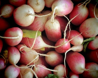 It's Radish Season - Nature Fresh Food Photograph - Kitchen Wall Art - Farmer's Market Art Print - Wall Decor - Radish Photograph