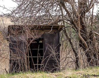 Rustic Photography, Old Abandoned Bus Stop, Country Landscape, Primitive Americana Home Decor, Warm Brown Green