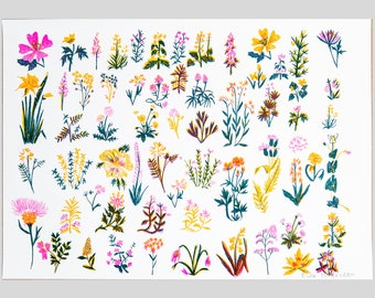 Wild Flower Riso Print - risograph, flowers, floral, wildflower, meadow,