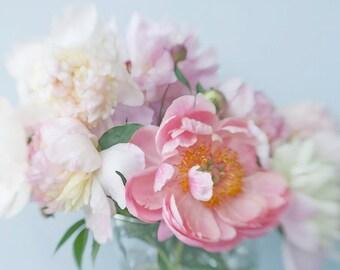 Peony Print, Coral Flower Photography, Peony Art Wall Decor, Pink Still Life Photography