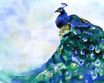Peacock Watercolor Painting - 24 x 20 - Giclée Fine Art Print Reproduction