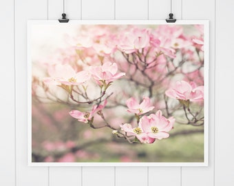 Pink Wall Art, Dogwood Photo, dogwood blossoms, fine art photo, nature print, fixer upper decor, pink wall decor, dogwood print, wall art