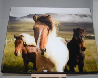 8x10 Resin Canvas, Horses Canvas, Horse Lovers