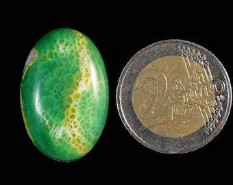 Amazing green white Dragon Veins Agate cabochons stone (EA1187)