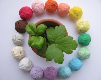 NEW---50 HERB Seed Bombs