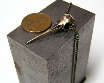 """Hummingbird Skull, Necklace Pendant  with 20"""" inch chain (br)"""
