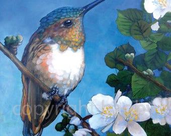 Rufous Hummer 'Print of Original' oil Painting colorful Green Bird Little Hummingbird tree flower