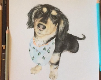Personalised Pet Portrait Only- A4 size