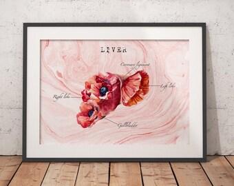 Liver Transplant Liver Cancer Liver Art Anatomy Art Gift For Nurse Medical Art Graduation Gift Medical Office Poster Sobriety Gift