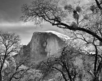 Yosemite National Park Half Dome Photo Wall Art