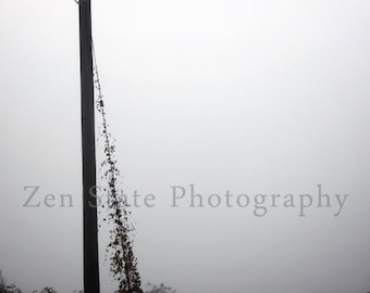Lost In the Fog Photography Print. Foggy Photo Print Gray Wall Art. Black and White Photography. Unframed Photo, Framed Print, Canvas Print.