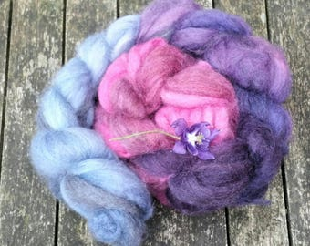 Hand dyed spinning fibre, Ecru and Oatmeal Bluefaced Leicester, 115g, BFL combed tops, gradient dyed spinning fibre