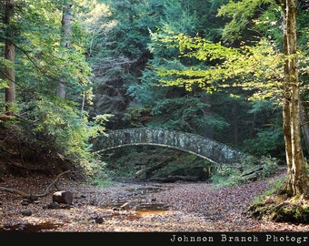 Stone Bridge in the woods near Old Mans Cave at Hocking Hills State Park