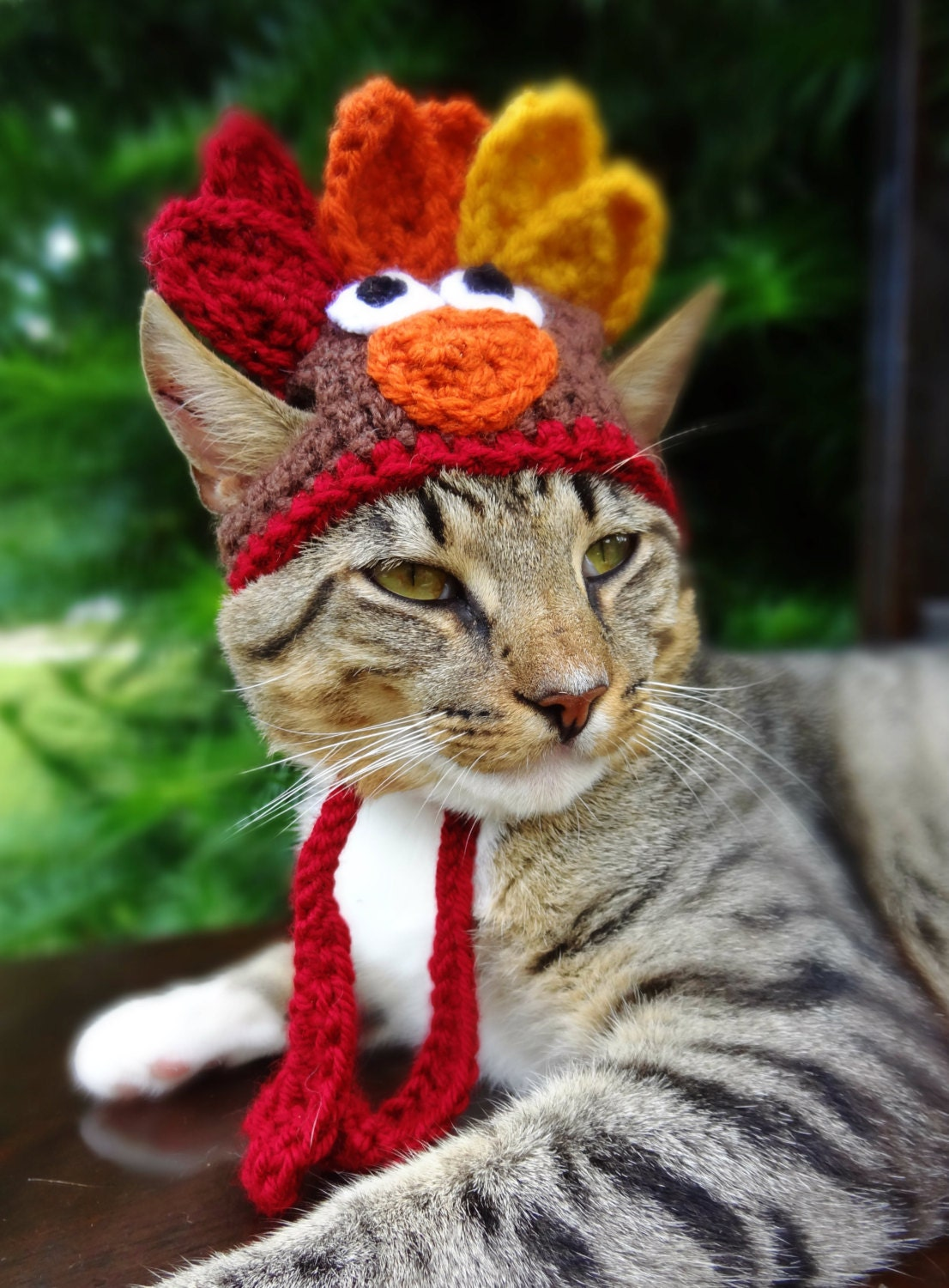 Turkey Cat Hat, Turkey Cat Costume - The Thanksgiving Turkey Hat for Cats and Small Dogs - Turkey Costume for Cat, Turkey Hat for Cat