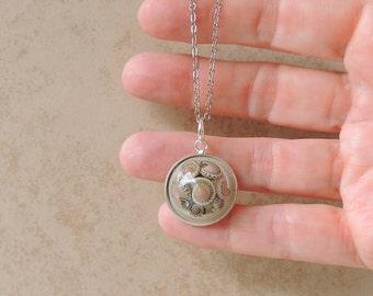 Snail Shells Necklace, Snail Shell in Resin Pendant, SALE, Resin Jewelry, Snail Jewelry Jewellery, Mollusc, Garden Creature, UK Seller