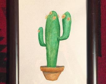 Cereus the youth cactus-Watercolor framed Original
