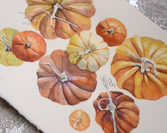 Pumpkins watercolor, Original watercolor paintings, original art, wall decor,  Botanical print, Pumpkins, squash, illustration.