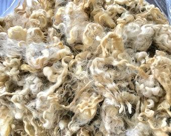 Raw White Leicester Longwool Fleece (Charleston)