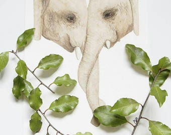 Elephant - Mother and Child Series Fine Art Print
