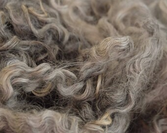Silver-grey curls from the Gotland Pelzschaf